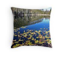 Twin Lakes Yellowstone NP Throw Pillow