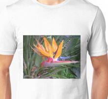 Strelitzia reginae Unisex T-Shirt