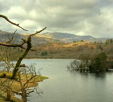 Rydal Water in March by Jamie  Green