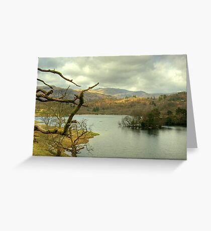 Rydal Water in March Greeting Card