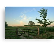 Five Barred Gate Canvas Print