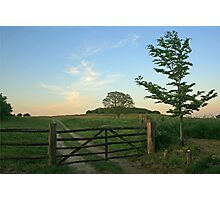 Five Barred Gate Photographic Print
