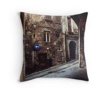 Perugia in the Snow, 2008 Throw Pillow