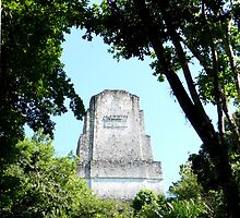 Tikal - Mayan Monument by Braedene