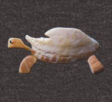 The Tortoise by Simone Lovack