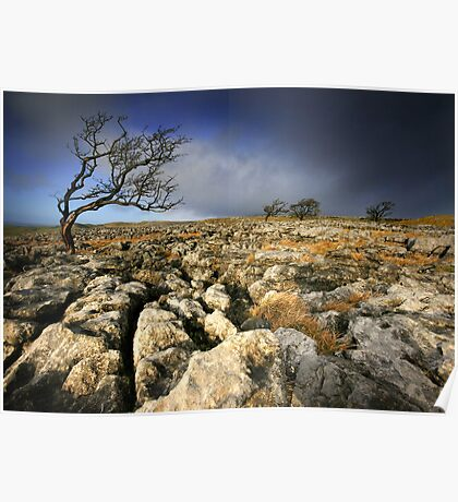 Yorkshire: Wild and Windy Moors Poster