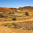 Road leading nowhere in the Kalahari desert. by Rudi Venter
