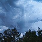 Storm Clouds by Joy  Rector