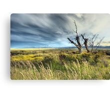 Big sky Patagonia Canvas Print