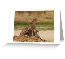 cheetah with her cubs in Tanzania Greeting Card