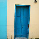 Blue Door by Christine Wilson