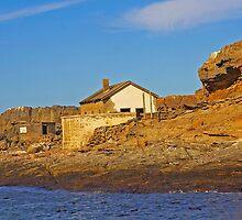 Deserted house on Halifax island by Rudi Venter