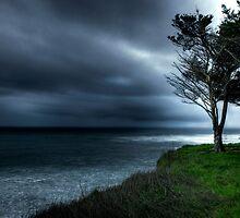 Rainy Day In Davenport, Santa Cruz, CA by garyfoto