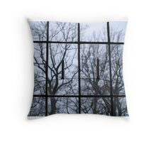 Window to another world Throw Pillow