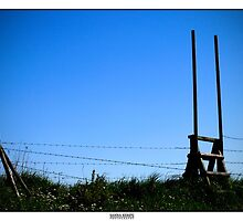 Over the fence by elithenia