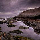 Grey Hound Rock, Santa Cruz, Ca by garyfoto