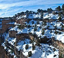 Grand Canyon Spring 1 by Bob Moore