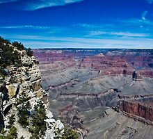 Grand Canyon South Rim  by Bob Moore