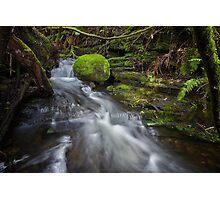 Guy Fawkes Rivulet, Tasmania #11 Photographic Print