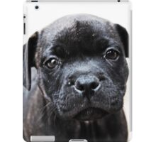 Milly iPad Case/Skin