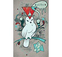 Noctua Photographic Print