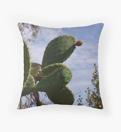 fichi d'indiaaaa Throw Pillow
