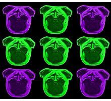 Green and Purple Pug Pattern Photographic Print