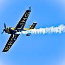 plane race  by Tarek Solh