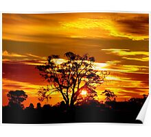 Sunset Over The Goldfields Poster