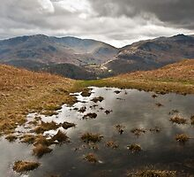 On Loughrigg Fell Towards Wrynose Pass by Stuart1882
