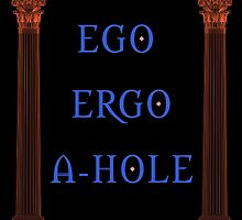 Ego Ergo A-Hole by IntrovertArt