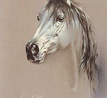 """Savannah"" by Sara Moon"