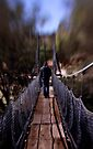 The Swing Bridge ~ York, WA by Pene Stevens
