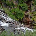 Narada Falls, Mount Rainier National Park by Stacey Lynn Payne