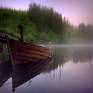 Loch Ard  by David Mould