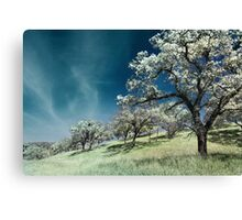 Sweat and Chills Canvas Print