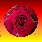 Red Rose February Globe by artcor7