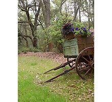 Wagon Garden Photographic Print