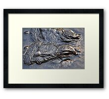 Gator head close up Framed Print