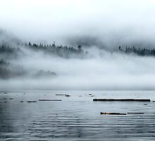 Mist over Mountains, Coal Harbour, BC by lgraham