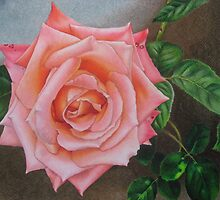 Satin pink rose by lanadi