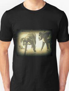Boxers At Play T-Shirt