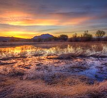 Hey, Bob posted another Sunset Pic..how original! by Bob Larson