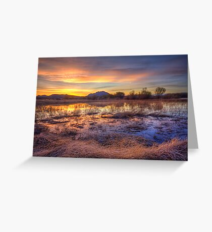 Hey, Bob posted another Sunset Pic..how original! Greeting Card