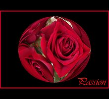 Passion  Roses by artcor7