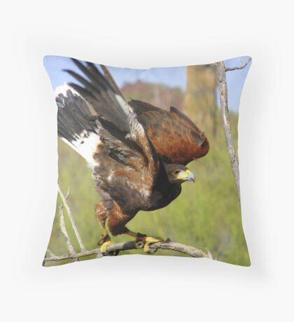 """I'm Free"" Harris Hawk Throw Pillow"