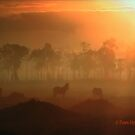 The Horses in the Morning Fog by Pam Moore