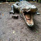 Crocodile by saneill17