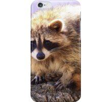 Bandit iPhone Case/Skin