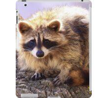 Bandit iPad Case/Skin